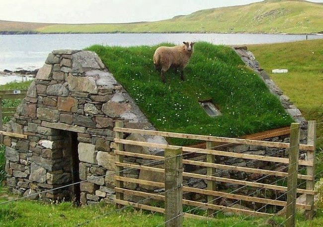 Is a green roof right for you for Green roof cost per square foot
