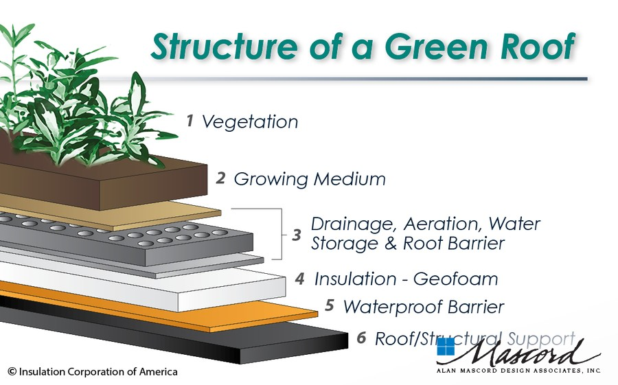 Is A Green Roof Right For You